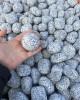 Piatră rotunjită sare și piper, 25 kg