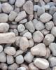 Piatră rotunjită rosaliu