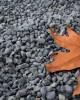 Piatră rotunjită gri închis, 20 kg