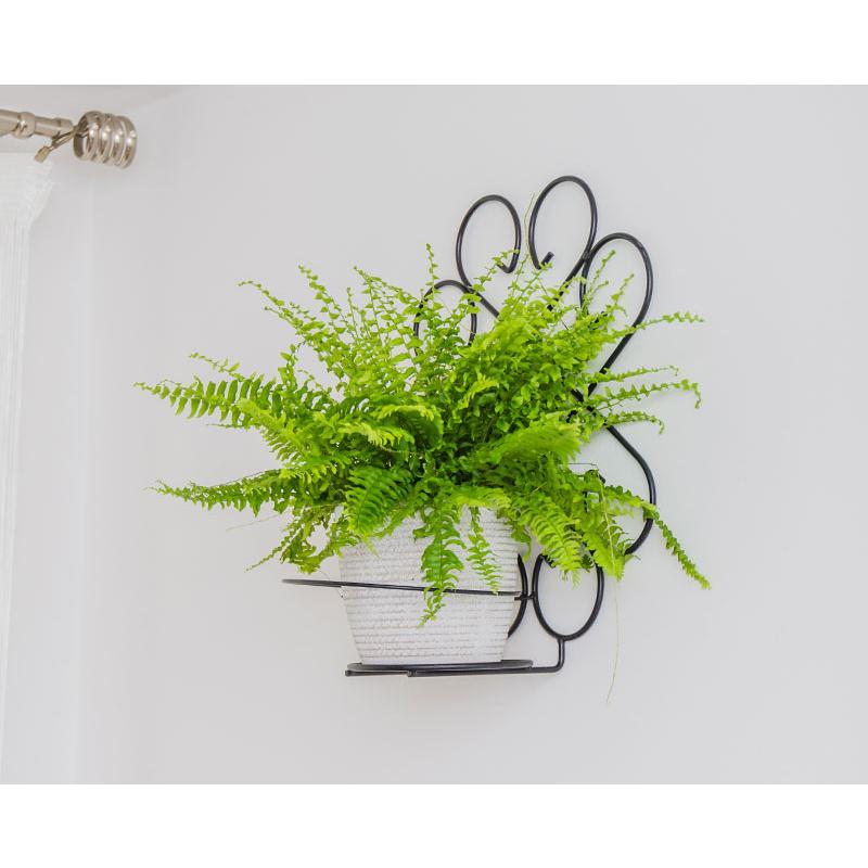 Suport de perete pentru flori