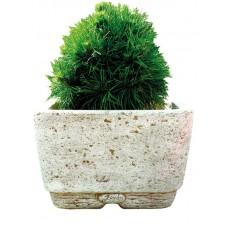 Jardinieră Neo 48