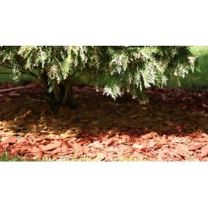Scoarță decorativă roșie
