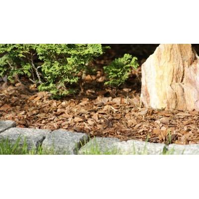 Scoarță de pin decorativă 30-60